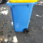 Bin cleaned and graffiti removed.